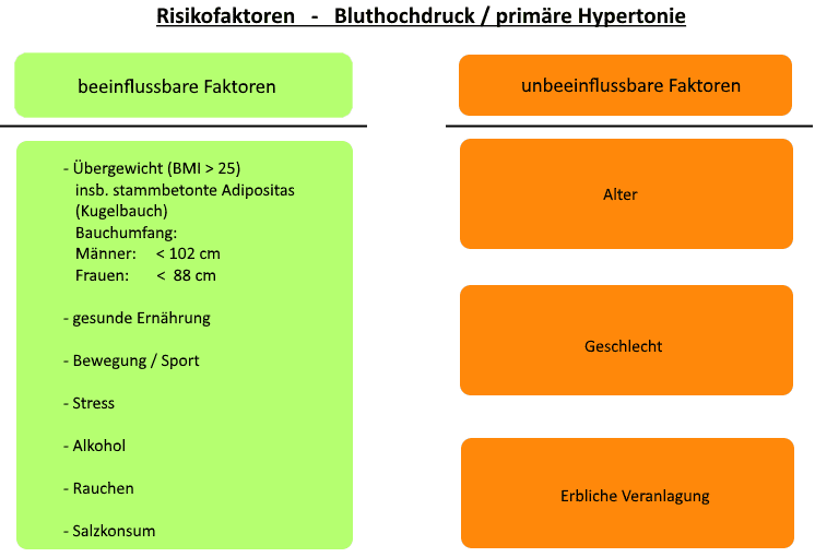 Die Ursachen und Risikofaktoren für Bluthochdruck / Hypertonie