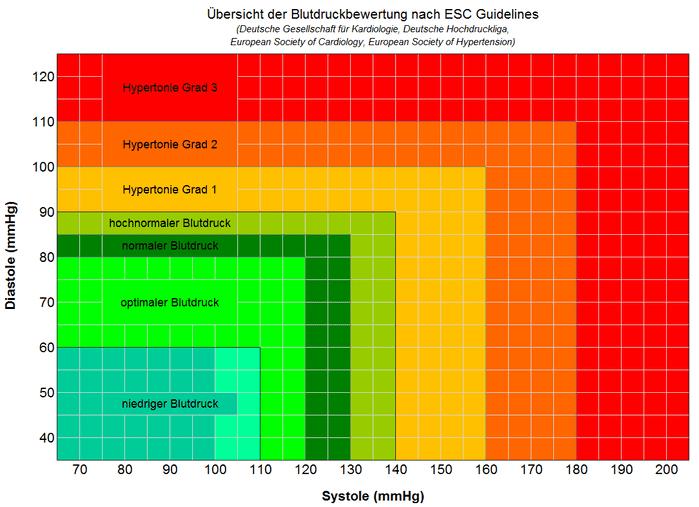 grafische Blutdruckbewertung nach ESC Guidelines